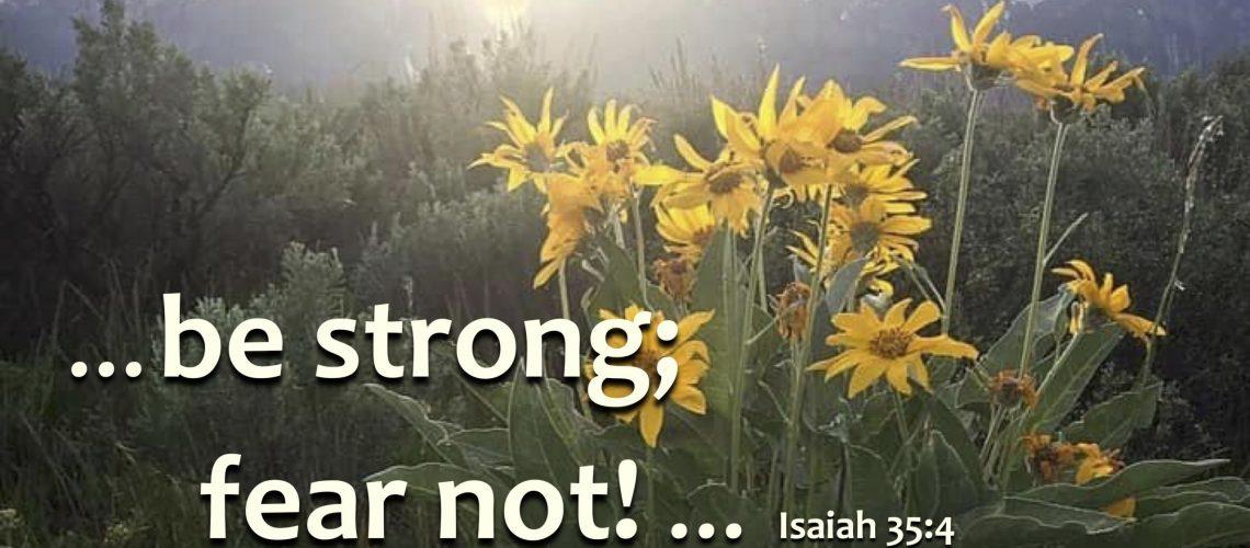 Isaiah 35.4